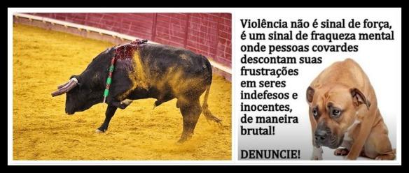 Violência, não é sinal de força...1